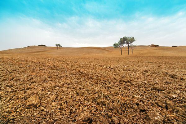 Agroa suelo un recurso clave y en riesgo for Recurso clausula suelo