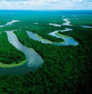 Medio ambiente tema - Humidificar el ambiente ...